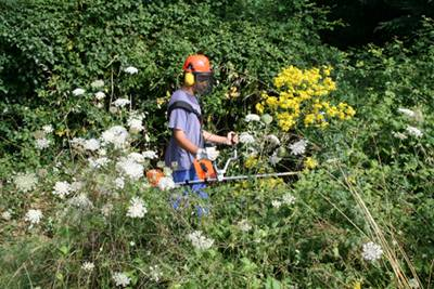 Cfc pays de la loire jardiniers d auteuil archives cfc pays de la loire for Jardin de jardiniers